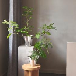Passion champagne glas